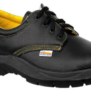 zapatoseguridad